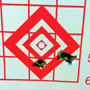 A 200 yard 3-shot group with a Savage 338 Lapua. As usual the flyer was the third shot!